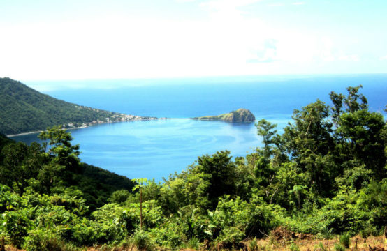 Dominica Real Estate: Land For Sale In Pointe Michel