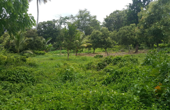 Dominica Real Estate: Lots For Sale In La Plaine