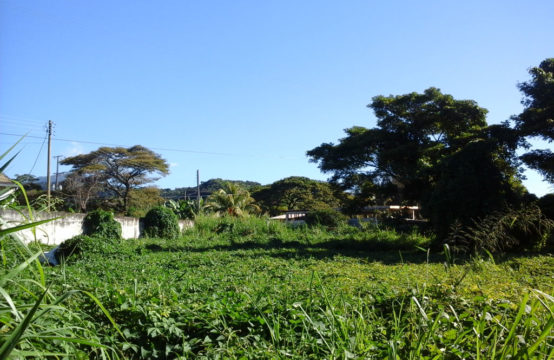 Huge Commercial Lot For Sale in Canefield