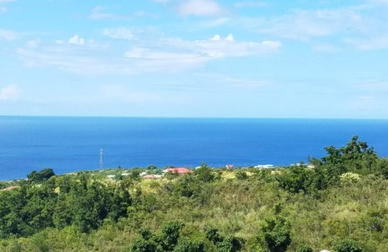Dominica Real Estate: Land For Sale In Salisbury