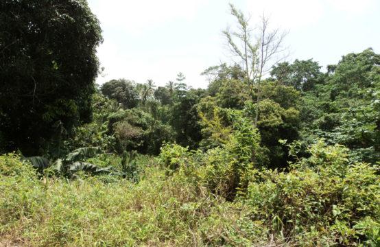 Land For Sale In La Roche