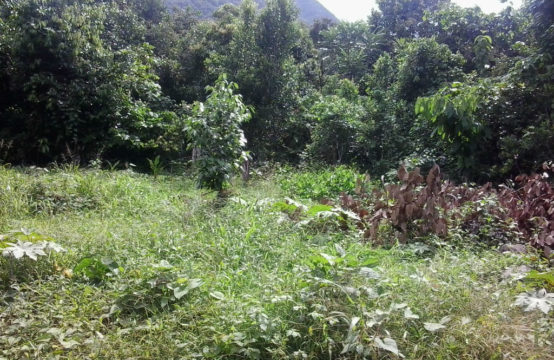 Land For Sale In La Plaine