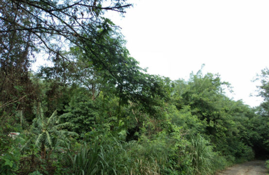 Dominica Real Estate: Residential Lot In Morne Daniel For Sale
