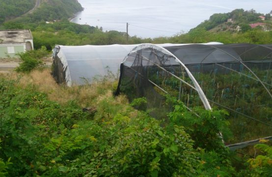 Lot For Sale In Morne Raquette, Dominica