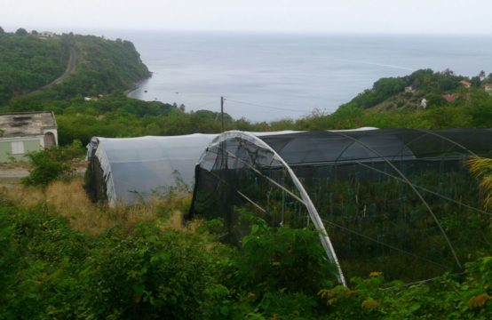 Land For Sale In Morne Raquette, Dominica
