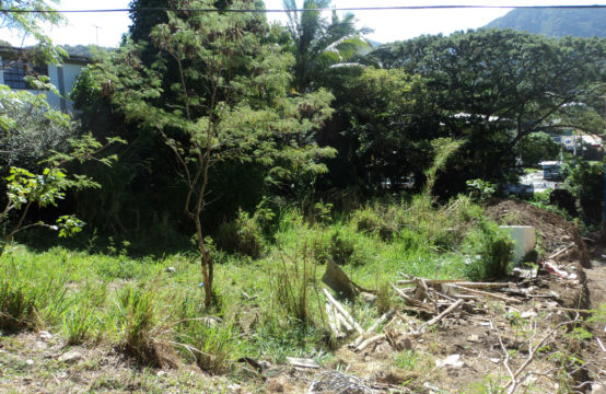 Land For Sale In Castle Comfort