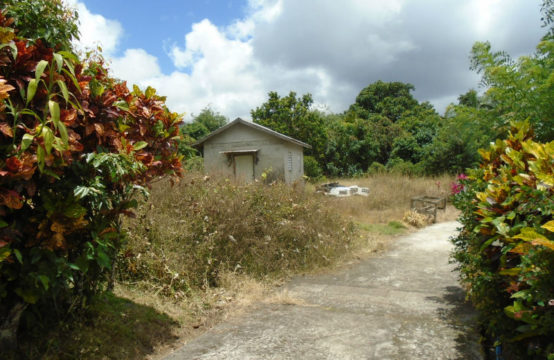 Dominica Real Estate: Property for sale in Grand Fond