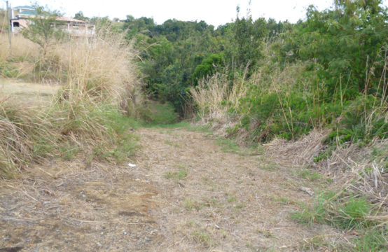 Dominica Real Estate: Lot For Sale In Morne Daniel
