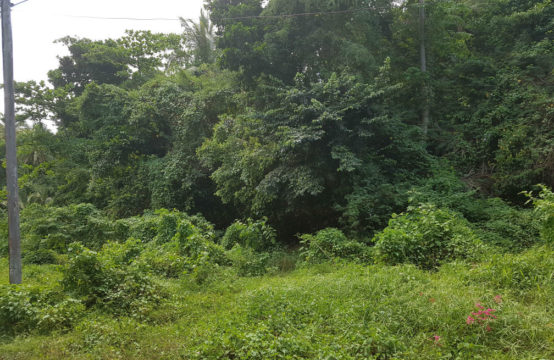 Dominica Real Estate: Lot For Sale In Belfast