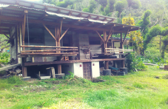 Property For Sale In Soufriere