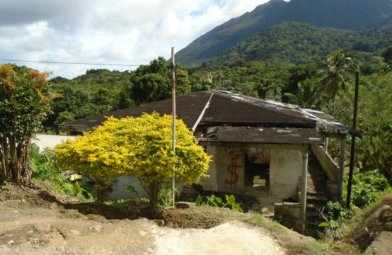 Dominica Real Estate House For Sale In Despor