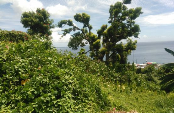 Residential Lot For Sale In Morne Bruce
