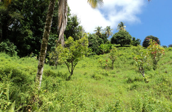 Dominica Real Estate: Land For Sale In Castle Bruce