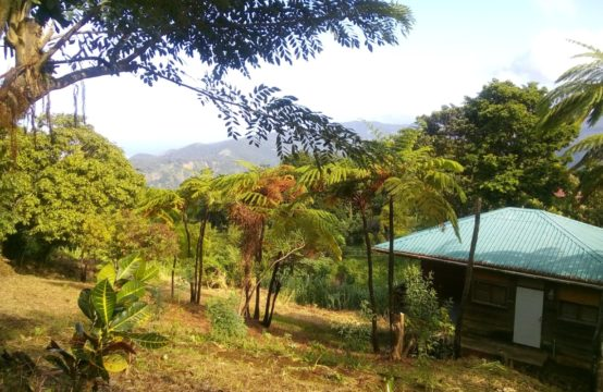 Property For Sale In Giraudel, Dominica