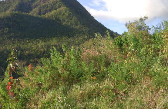 Residential Lot For Sale In Dublanc