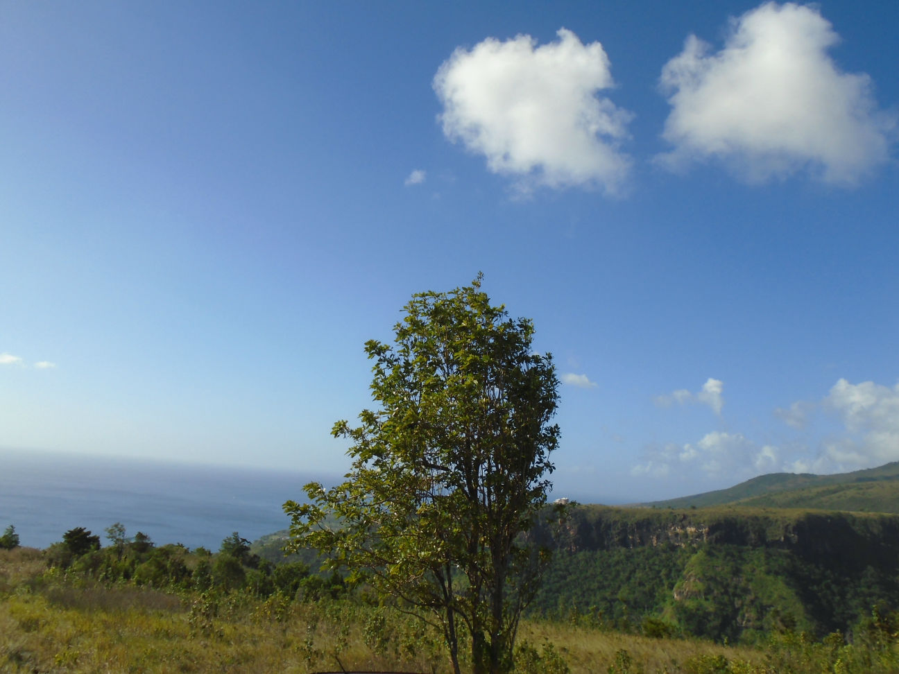 Dominica Real Estate: 1 acre land for sale at Cuba Road, Mero
