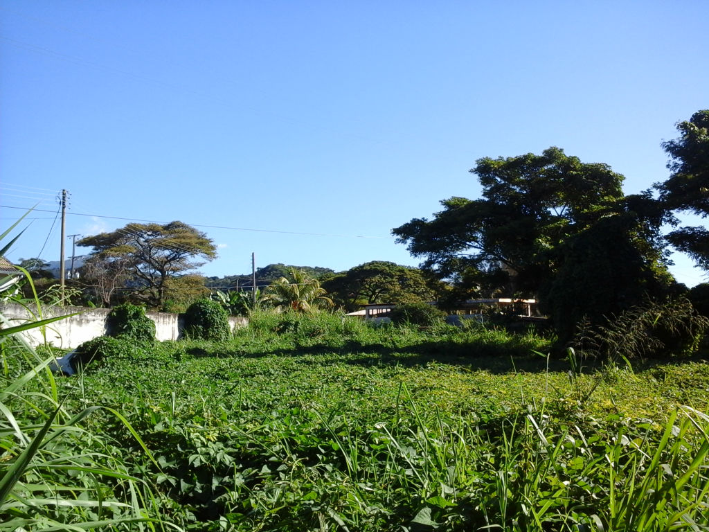 Dominica Real Estate: Land For Sale In Canefield, Dominica