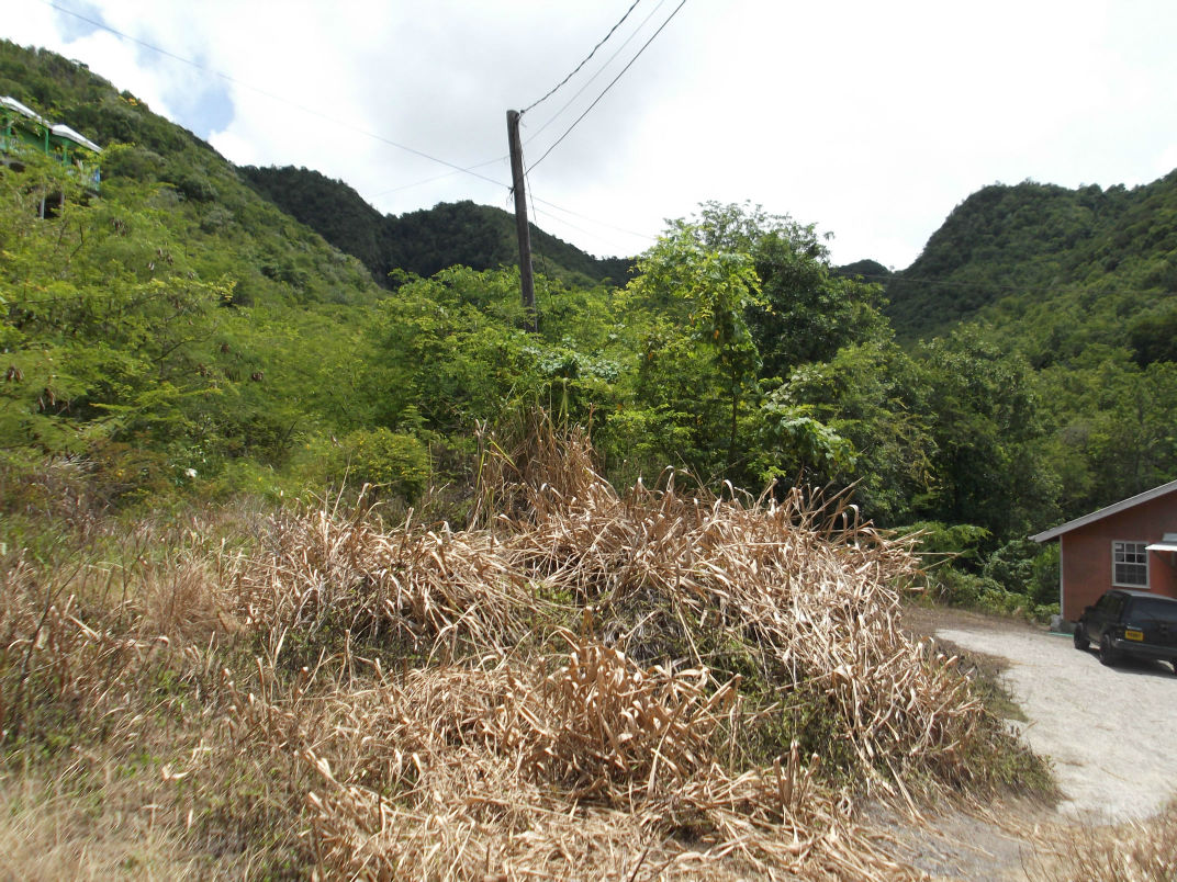 Dominica Real Estate: Acres of land in Mero