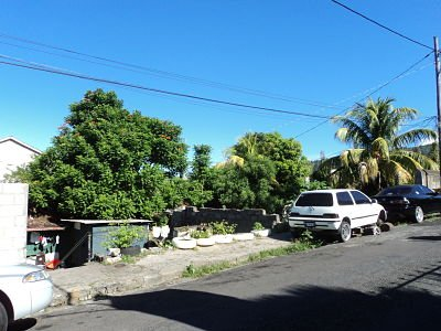 Dominica Real Estate: Commercial Lot For Sale In Roseau