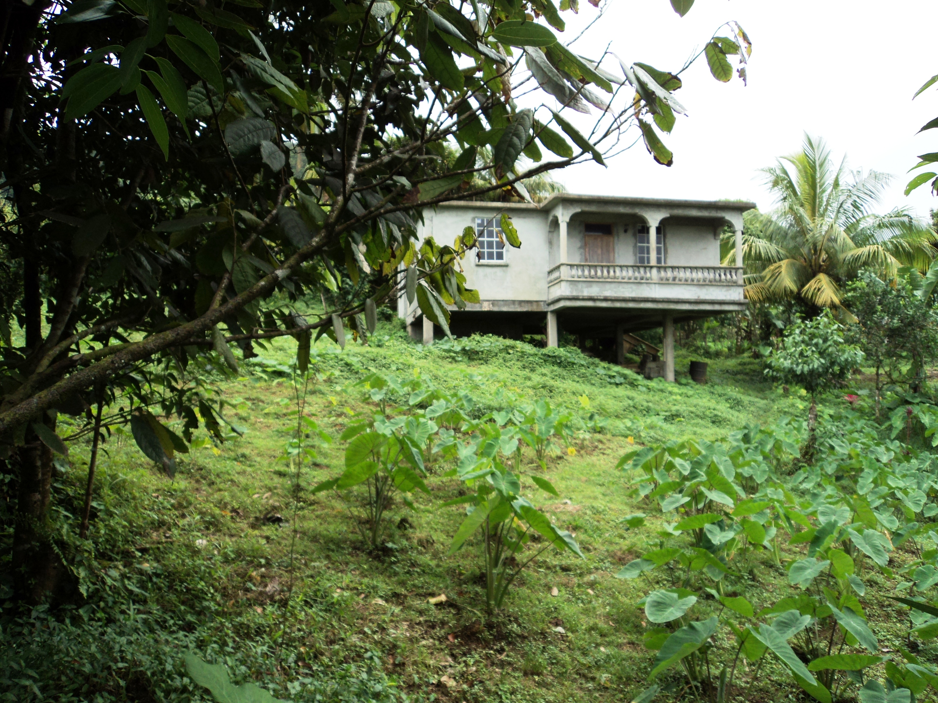 Dominica Real Estate: Unfinished house for sale