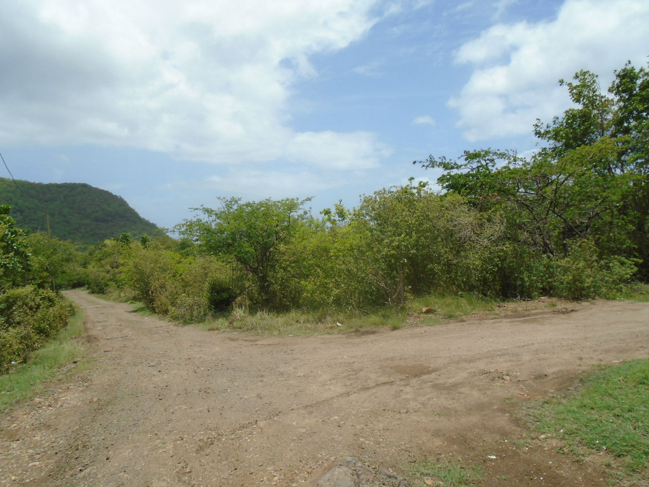Dominica Real Estate: Land For Sale Near National Park