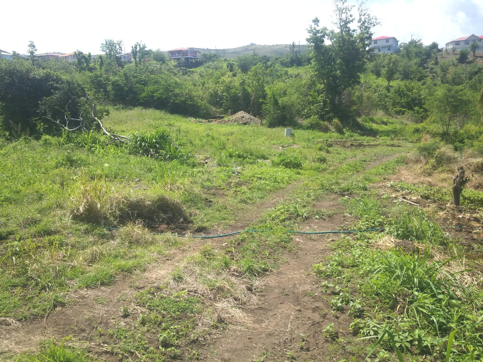 Dominica Real Estate Lots for sale in Salisbury