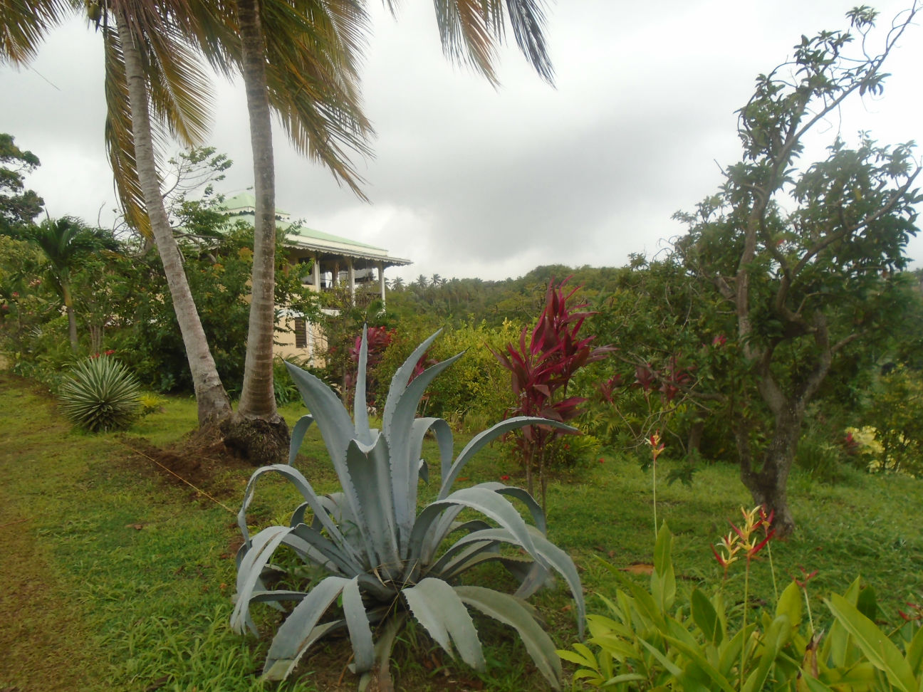 Dominica Real Estate For Sale In Savanne Pille