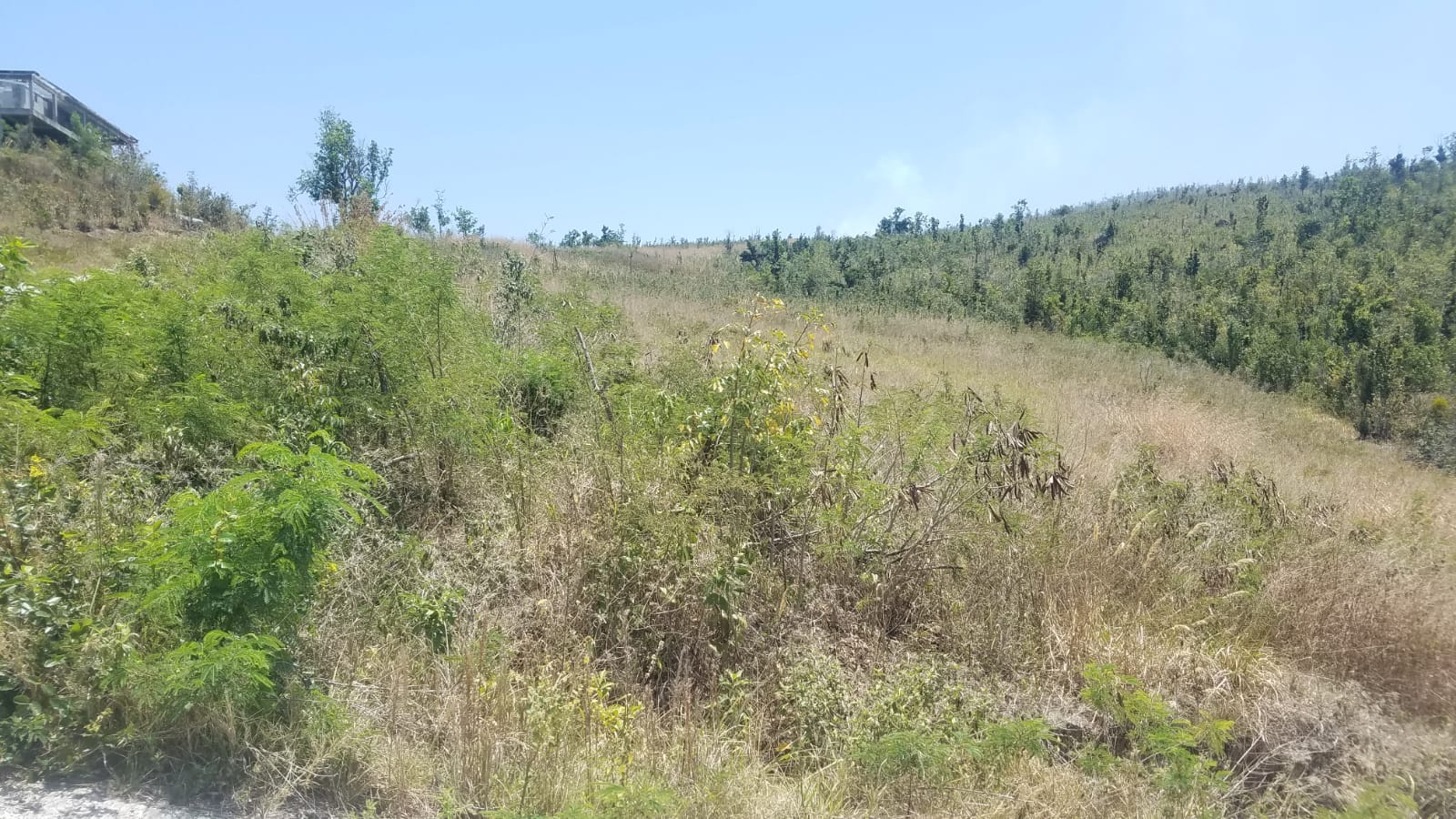 1 Acre Lot For Sale At Cuba Road, Mero